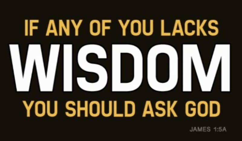 40349-wisdom.800w.tn