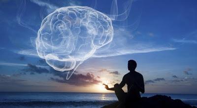 Brain study Harvard Meditation feelguide com